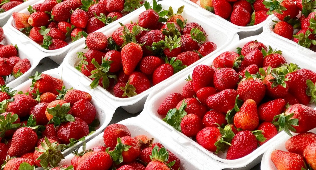 Strawberries In Packaging Containers 2629173