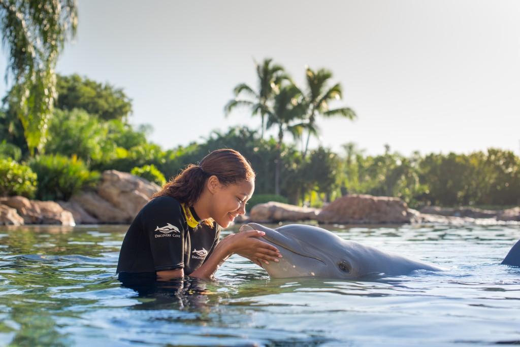 Dco 2019 Dolphinlagoon Rg1 8214 Final