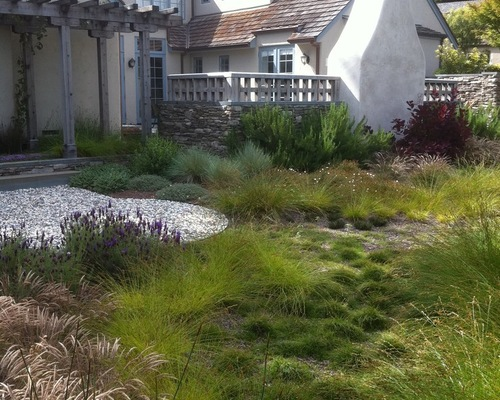 Water Saving Landscaping Ideas For Traditional Style Homes